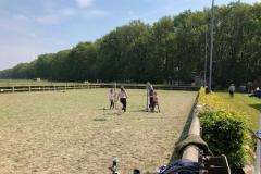 ponykamp-12
