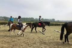 ponykamp-9
